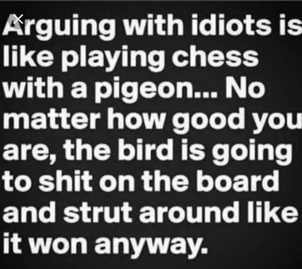 Arguing-with-idiots