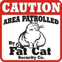 Fat_cat_caution_640